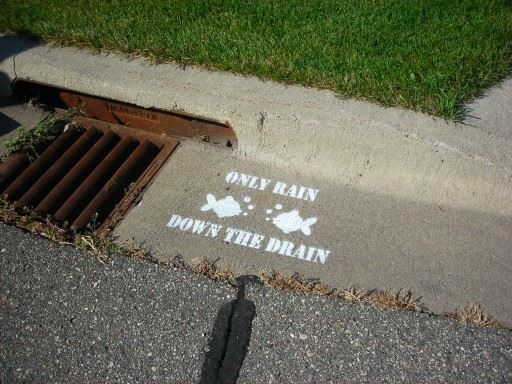 Stormdrain painted with slogan Only Rain down the Drain